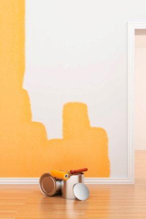 Резиновая краска: состав и особенности