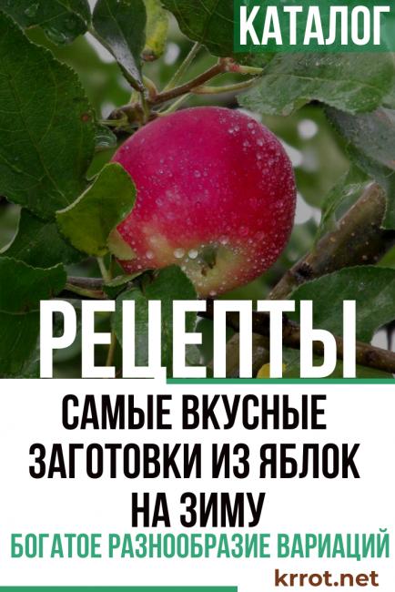 переработка яблок в домашних условиях рецепты