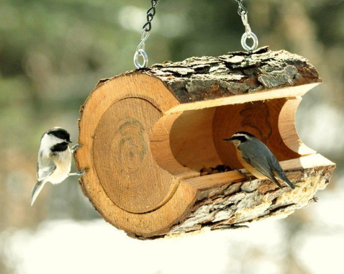 Кормушка для птиц своими руками: оригинальные идеи + 60 фото