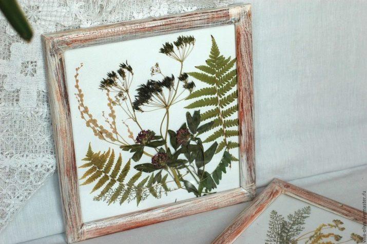 композиция из гербария