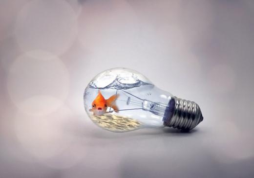 Почему моргает свет в квартире: поиск причин и способов устранения
