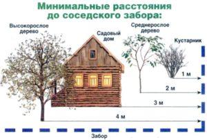 расстояние между частными домами по закону