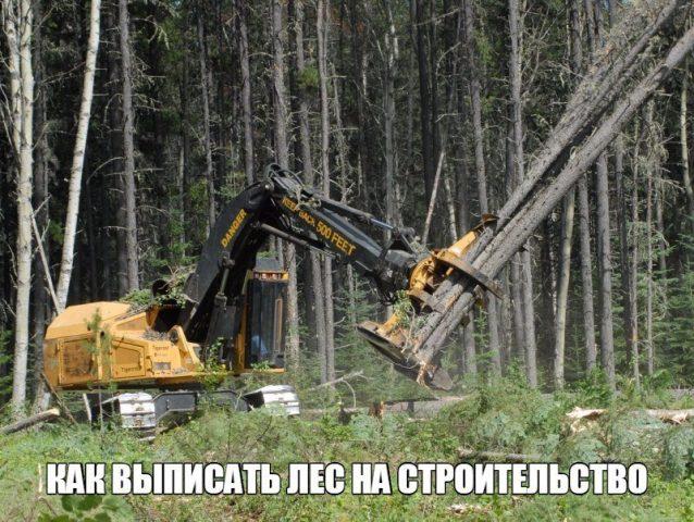 как получить лес который положен каждому гражданину