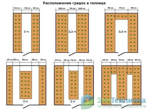 Расположение грядок в теплице 3х6: размеры и как сделать дорожки
