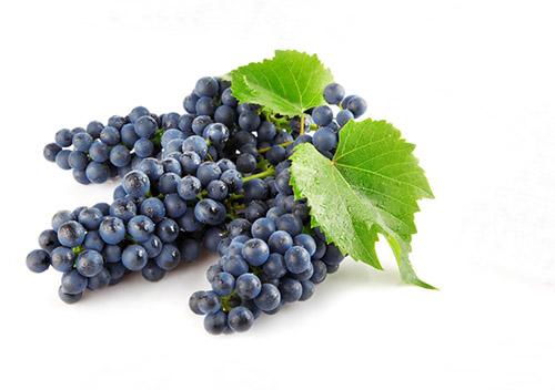 Как сделать вино из винограда в домашних условиях?