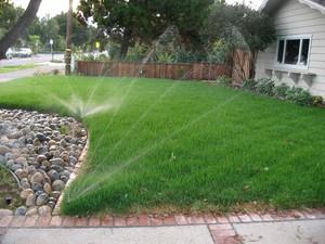 Полив, подкормки и проветривание газона