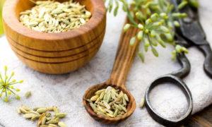 Про фенхель: полезные свойства, и применение в кулинарии