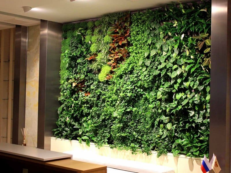 Зеленые комнаты саду со «стенами» из живых изгородей - цветочки - медиаплатформа миртесен