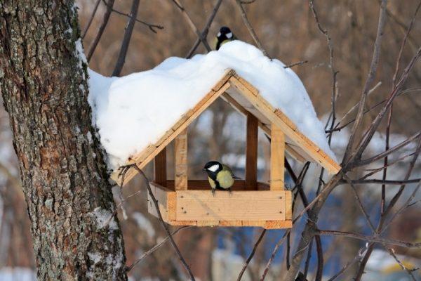 Кормушки для птиц своими руками фото примеры, оригинальные идеи
