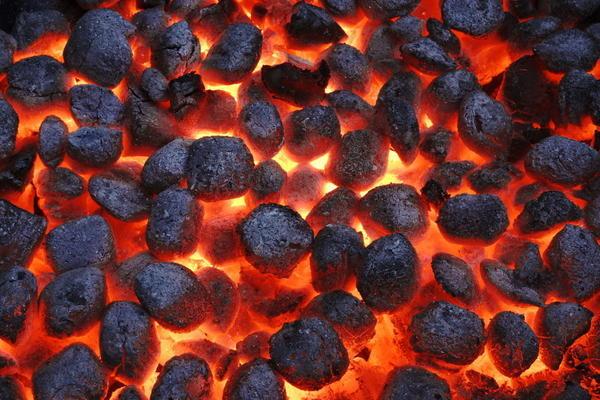 Разновидности и марки угля: описание сортов, характеристики ископаемого, маркировка и применение топлива