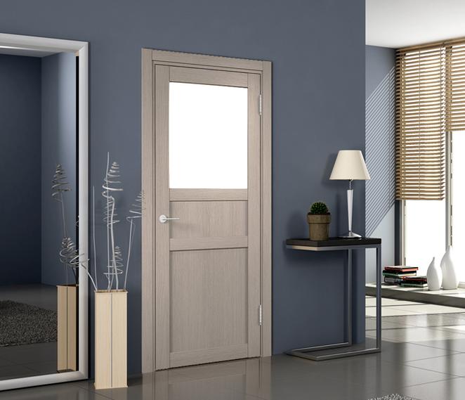 Дизайн дверей темного цвета в интерьере