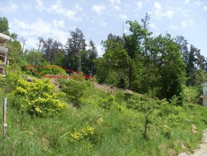 Ландшафтный дизайн приусадебного участка своими руками 120 фото