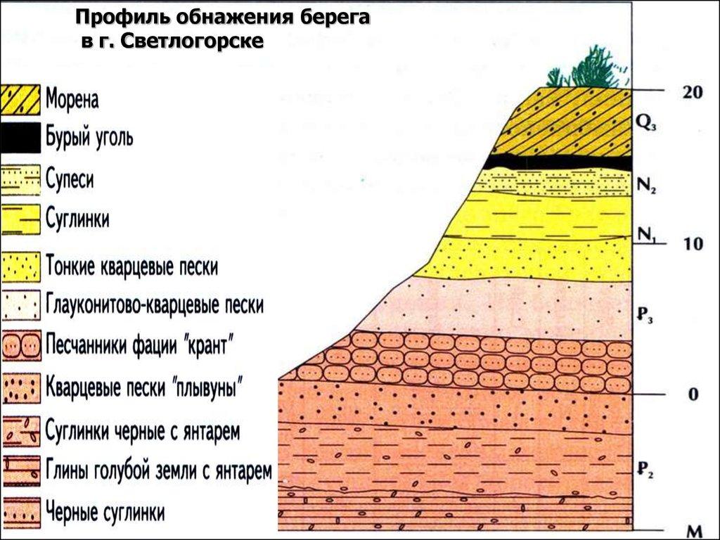 Россия почвы и почвенные ресурсы: характеристика серых лесных почв и др., типы грунта, карта черноземья