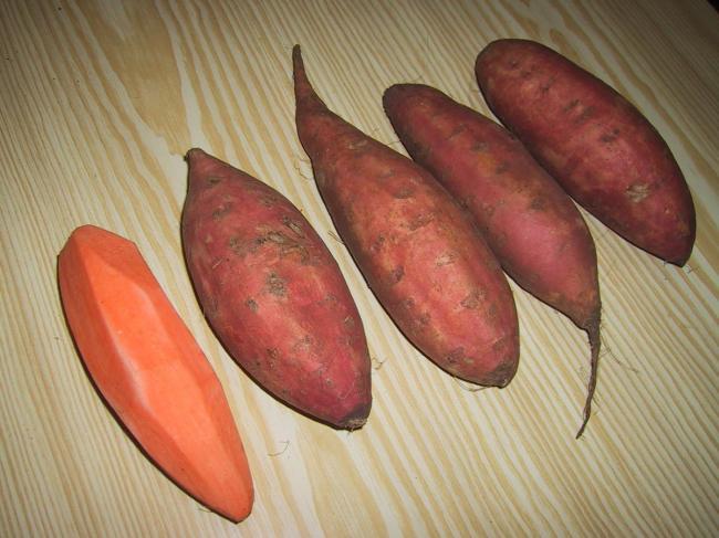 Что такое сладкий картофель батат и какова его польза и вред