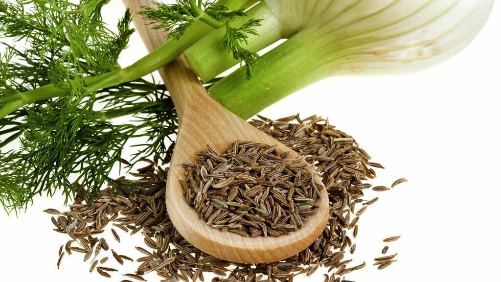 Семена фенхеля: лечебные свойства и противопоказания, как выглядят, применение для похудения, в кулинарии, отзывы, фото