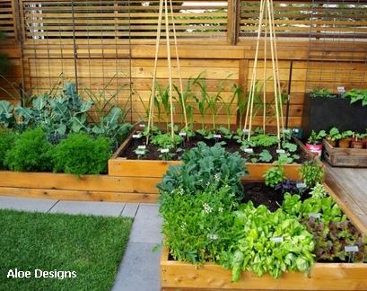 как правильно распланировать огород