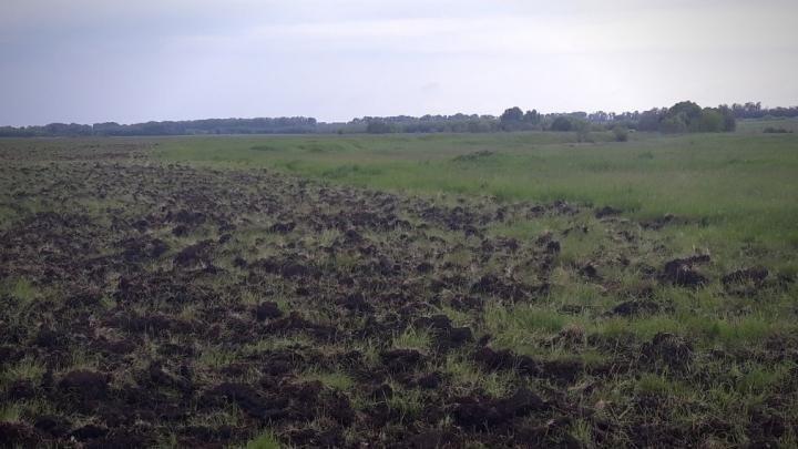 водоохранная зона реки сколько метров