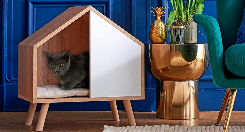 кошкин дом фото