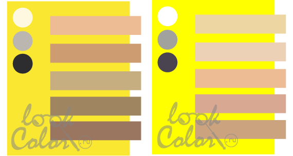 сочетание цветов таблица