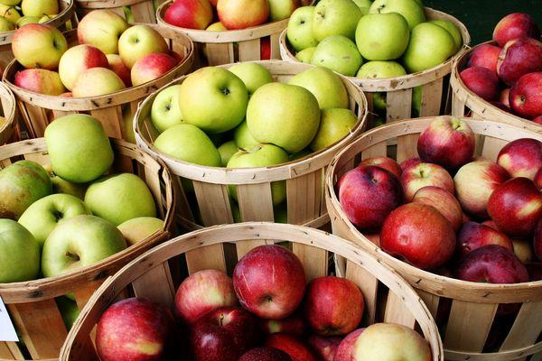 каштель яблоки