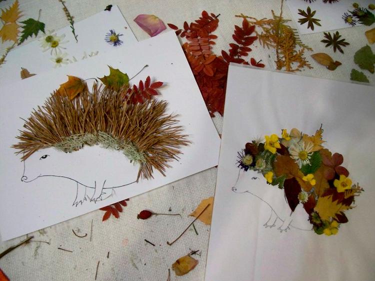 Гербарий из листьев и цветов в интерьере, как сделать своими руками, красивые типы и виды, как правильно собирать и сушить материал