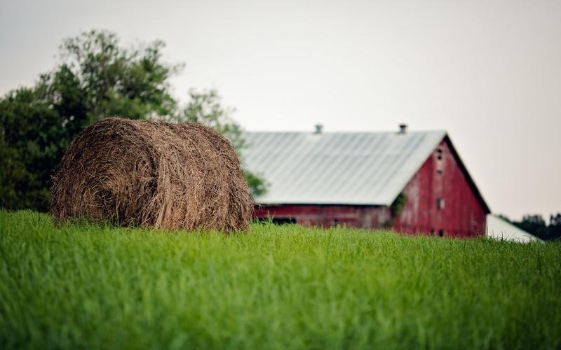 Как правильно купить земельный участок с домом в собственность?