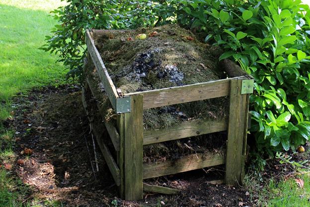 Действенные средства для ускорения созревания компоста
