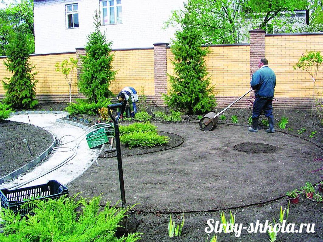 как садить газонную траву семенами своими руками