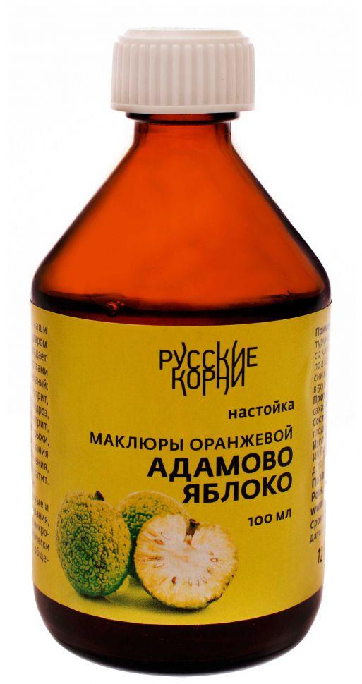 Маклюра – лечебные свойства и рецепты
