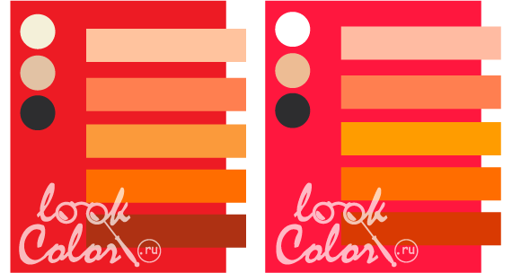 с каким цветом сочетается оранжевый цвет