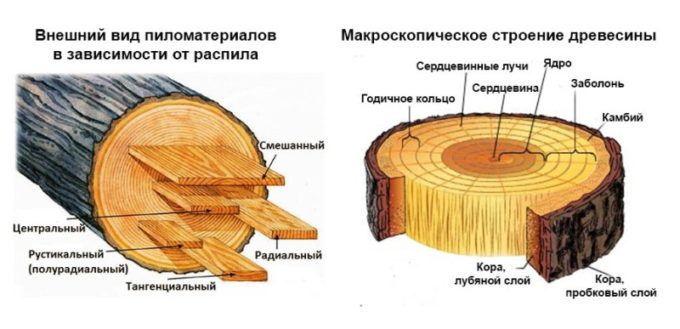 где используется древесина