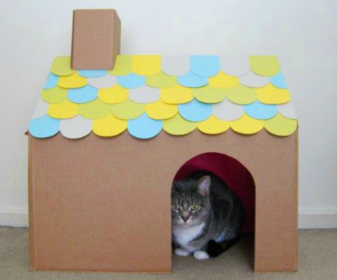 Домик для кошки своими руками (70 фото): как сделать лежанку для кота в домашних условиях по чертежам? самодельные кошачьи домики из газетных трубочек, из дерева и из других материалов