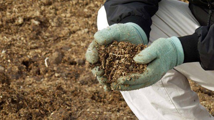 Проблемы органического земледелия: как избавиться от мифов и получить экологически чистый урожай
