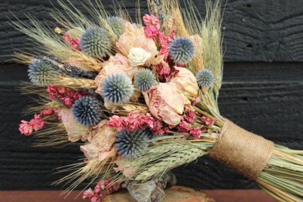 сухоцветы для флористики