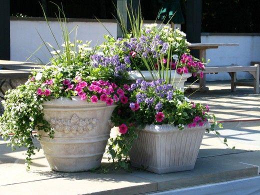 Как выбрать цветочные горшки? виды горшков для комнатных растений, как определить размер