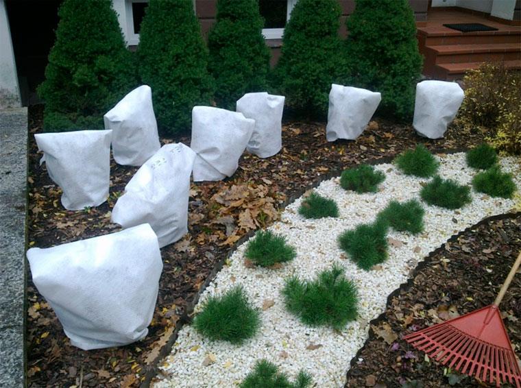 Как укрыть растения на зиму: способы и материалы