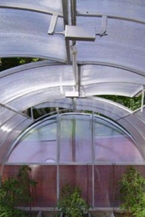 Теплица «тюльпан» с открывающимися боками (45 фото): как построить мини парник со сдвижной крышей, инструкция и отзывы
