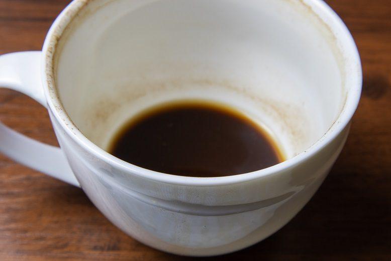 Кофейная гуща, как удобрение — для каких растений?