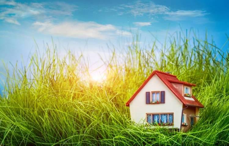 Как получить земельный участок многодетной семье: каков порядок предоставления, куда обращаться для получения, как оформить, где дают, а также может ли семья рассчитывать на выделение земли, если уже есть участок?своё