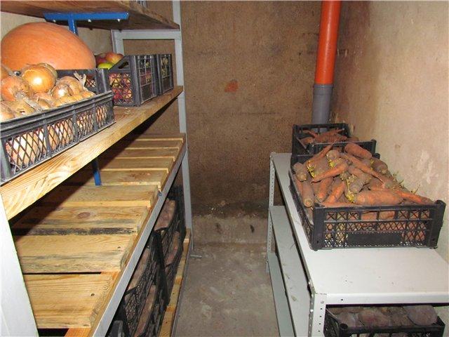 Как построить подвал в частном доме