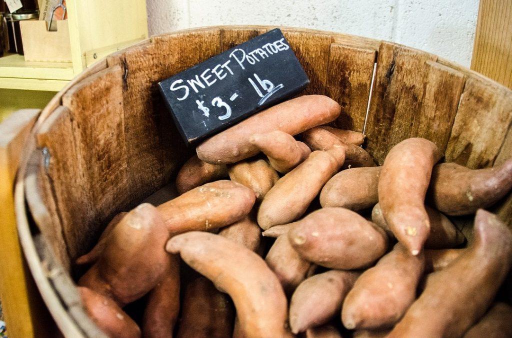 Батат (сладкий картофель): польза и вред для здоровья