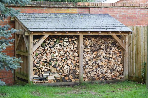 Храните дрова правильно! создаем лучшие условия хранения