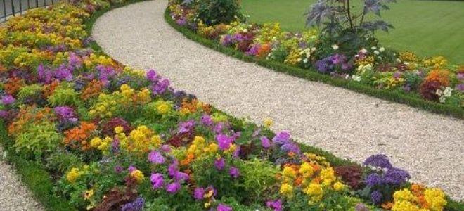 Схемы клумб непрерывного цветения с описанием цветов — как сделать цветник
