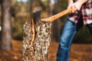 Кто должен спиливать деревья на придомовой территории, в городе, признаки аварийных объектов, чем регламентируется спил сухих и опасных насаждений?