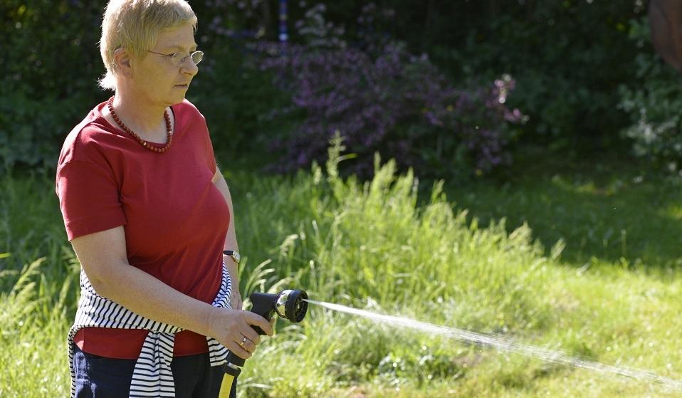 13 лучших садовых опрыскивателей