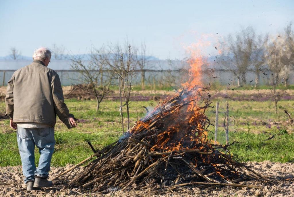Можно ли сжигать мусор на своем дачном участке во дворе: закон, правила