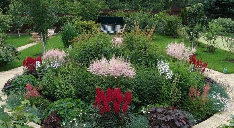 Как сделать клумбу непрерывного цветения из многолетников: схемы и варианты