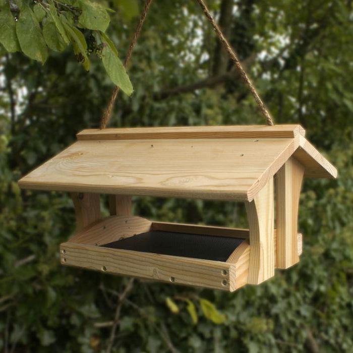 Съедобные кормушки для птиц