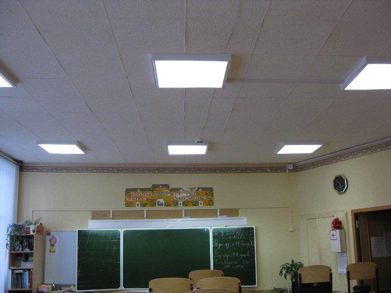 Люминесцентные лампы для растений (дневного света): подходит ли и как выбрать фитолампу для подсветки комнатных растений
