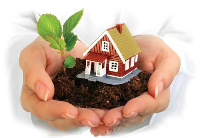 Как купить земельный участок в собственность правильно?